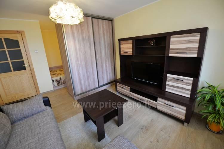 Kristinos 1 kambario butas Druskininkuose netoli Nemuno upės