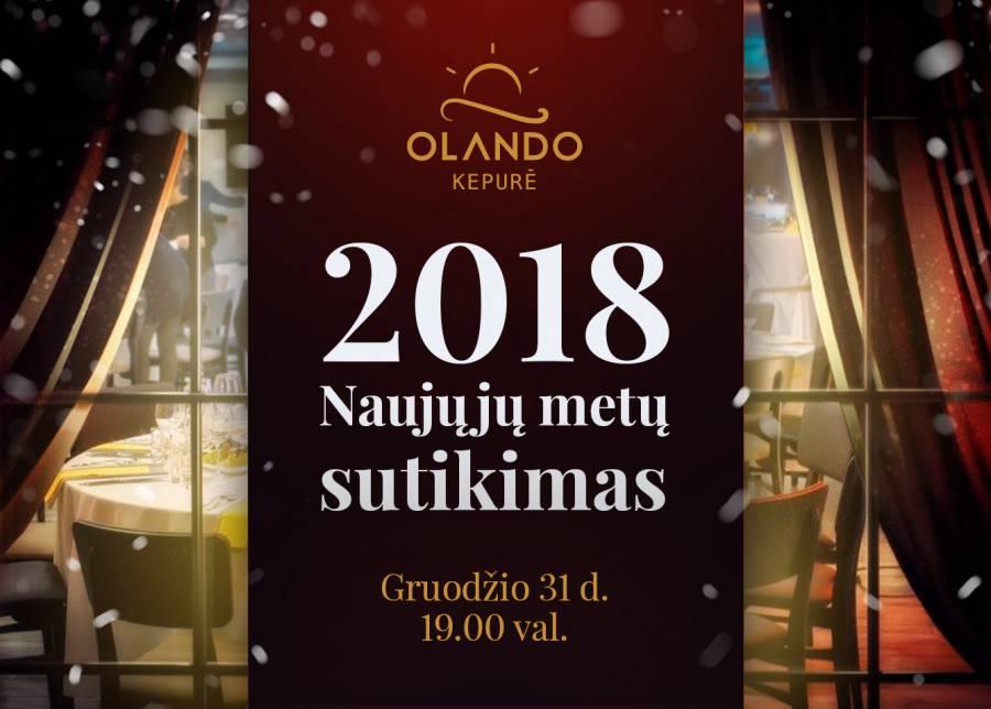 """Pasitikite Naujuosius 2018 metus poilsio namuose """"Olando kepurė""""."""